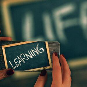 live, learn, board